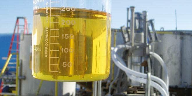 Documento lista estratégias para o desenvolvimento do bioquerosene no Brasil