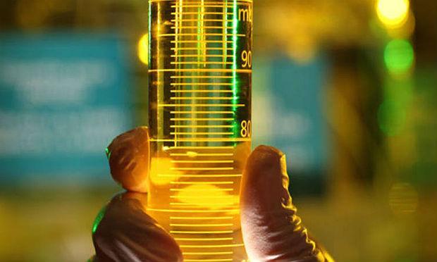 Produção de biodiesel feito com soja deve ser retomada no Rio Grande do Sul