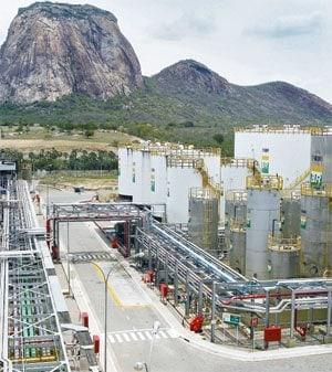 Oito empresas brasileiras no Índice Dow Jones de Sustentabilidade