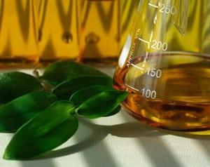 Percentual menor de biodiesel em combustível preocupa indústria