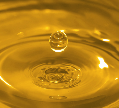 Boletim Mensal do Biodiesel ANP – agosto 2013