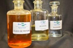 Matérias-primas alternativas para biodiesel e etanol na AgroBrasília 2014