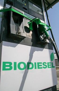 Políticas de incentivo estimulam o uso intensivo de misturas de biodiesel superiores a 10% nos EUA