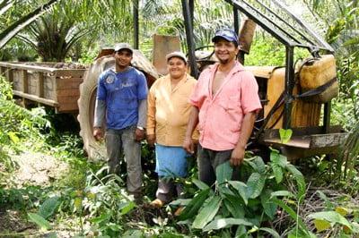 Integração da agricultura familiar à cultura do dendê é tema de workshop