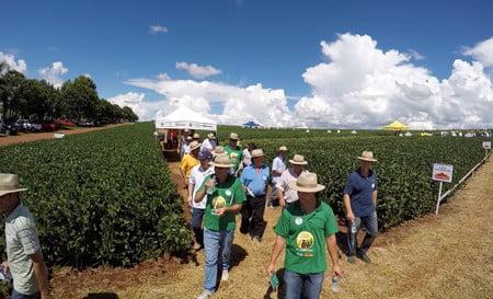Bianchini realiza o terceiro dia de campo para a agricultura familiar