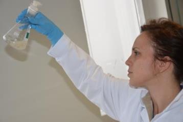 Pesquisas utilizam microrganismos para gerar produtos químicos a partir da glicerina