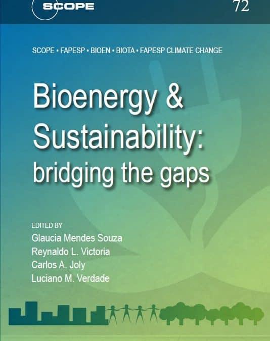 Relatório mundial sobre bioenergia e sustentabilidade é apresentado na Fiesp