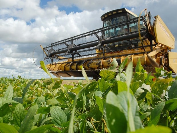 A soja corresponde a cerca de 70% da área cultivada no Tocantins (Foto: Ascom/Seagro)