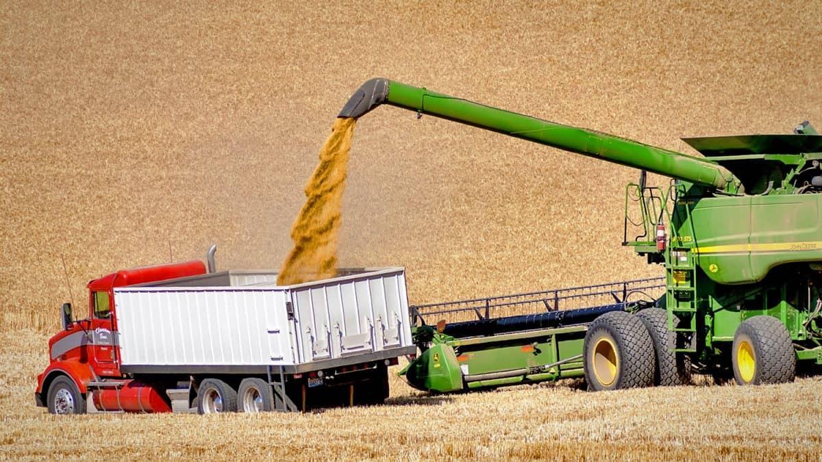 Importações chinesas de soja dos EUA atingem menor patamar desde 2008, compras do Brasil despontam