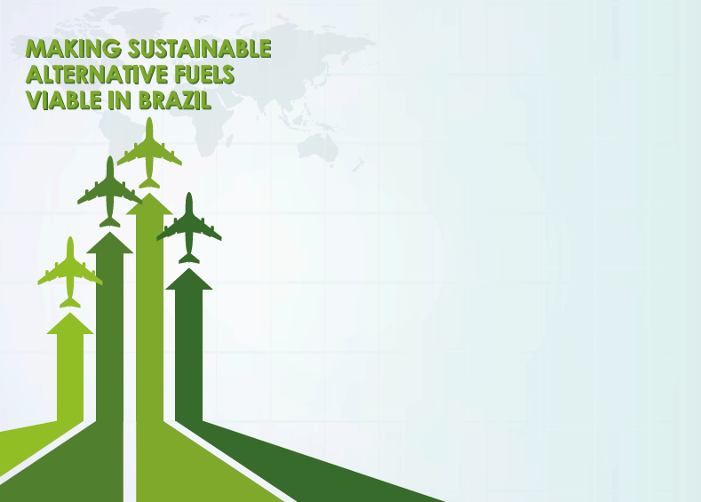 Making Sustainable Alternative Fuels Viable in Brazil