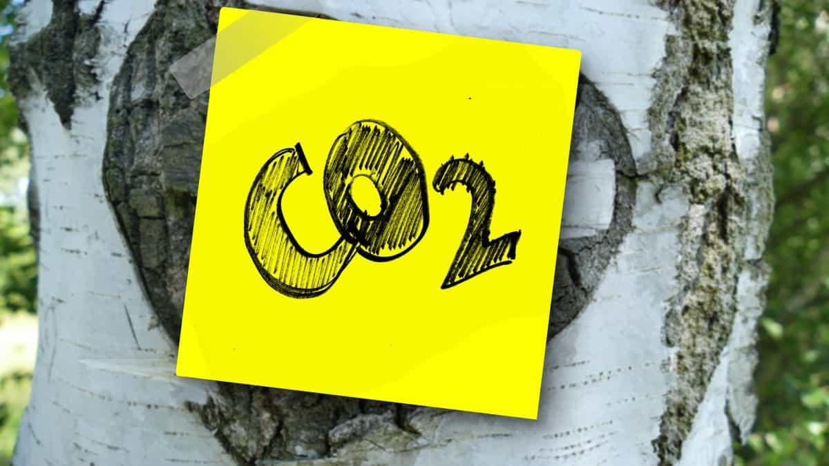CEBDS apresenta ao Ministro da Fazenda proposta de criação de mercado de carbono