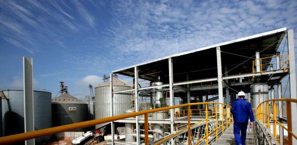 Análise de Conjuntura dos Biocombustíveis 2019