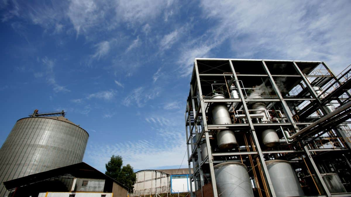 Brazil's November biofuels output remains resilient on year