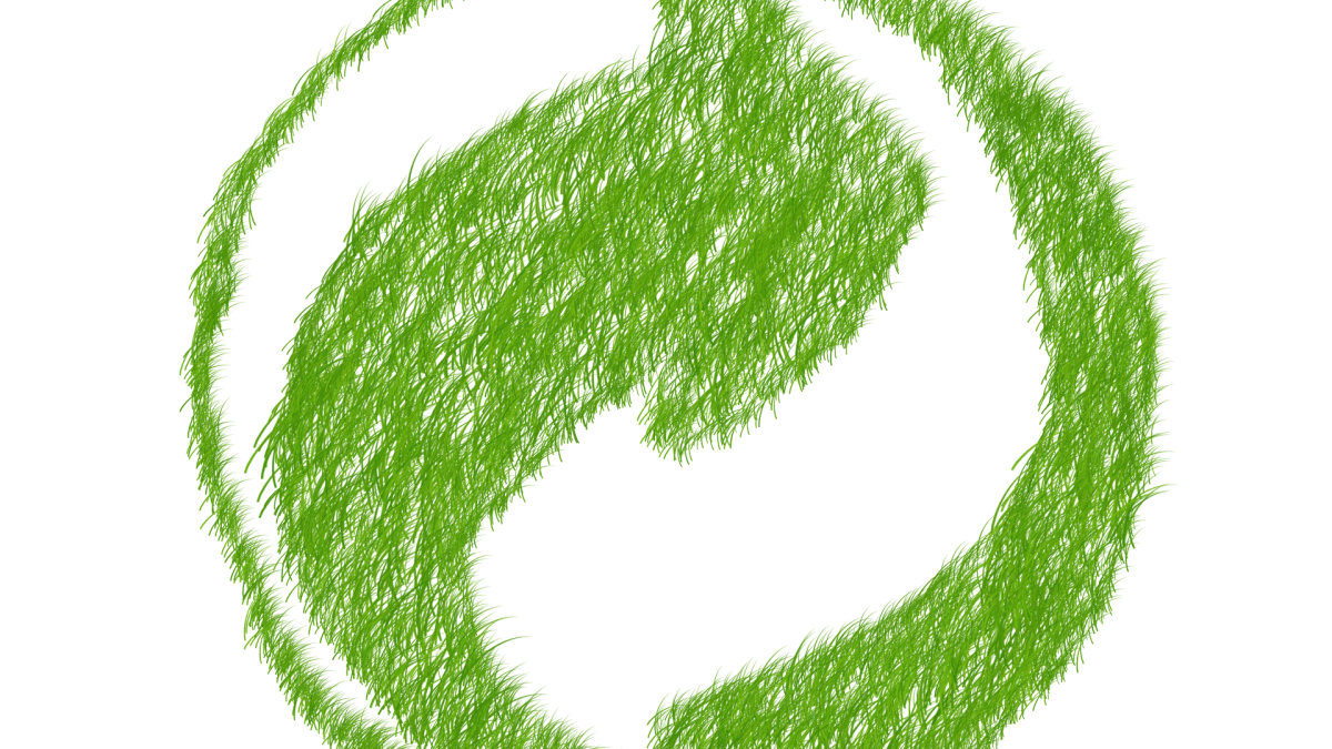VÍDEO-O biofuturo que precisamos