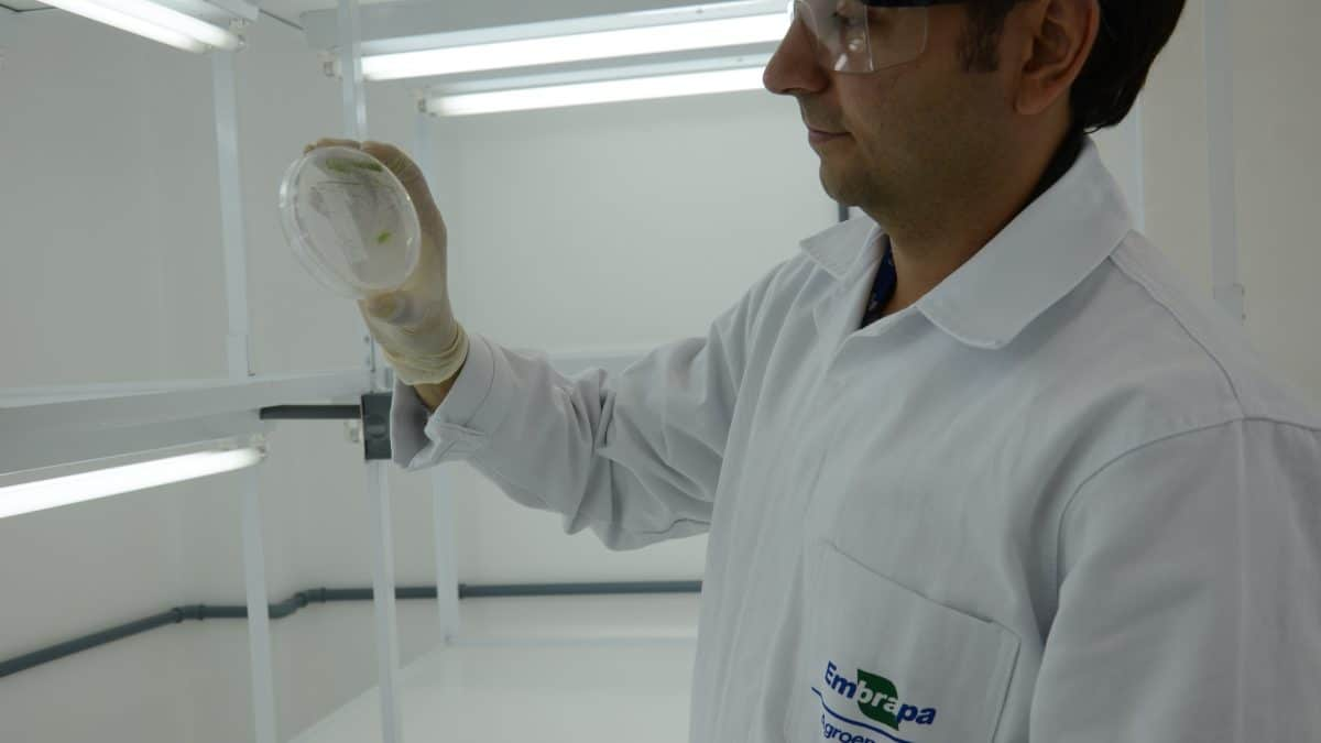 Oportunidades e desafios para desenvolvimento de bioprodutos a partir de biomassa é tema de debate durante evento em Brasília