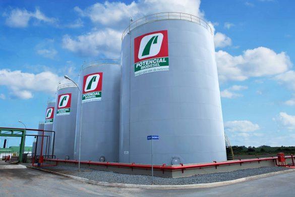 potencial biodiesel