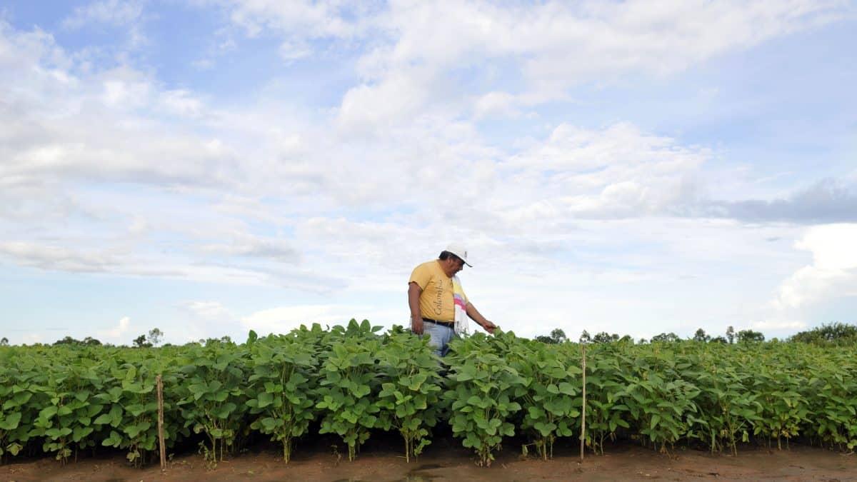 Ministério decide inserir todos os agricultores familiares no Selo Combustível Social