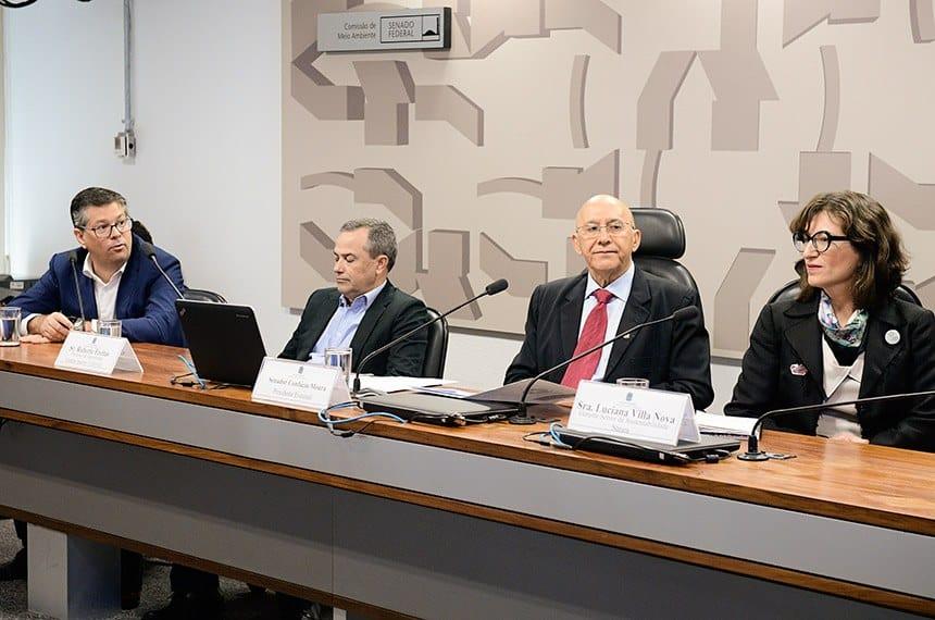 Na Comissão de Meio Ambiente, empresários defendem 'lucro verde'
