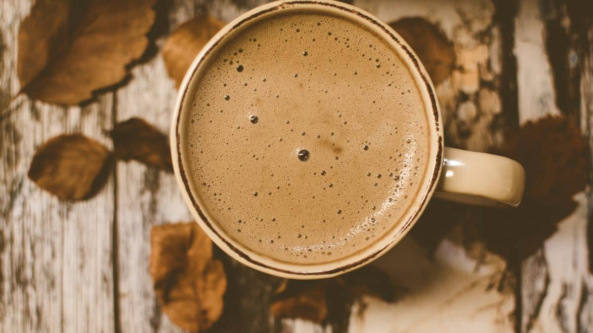 Um mundo sem chocolate, café, batata e peixe – os alimentos que podem desaparecer com as mudanças climáticas