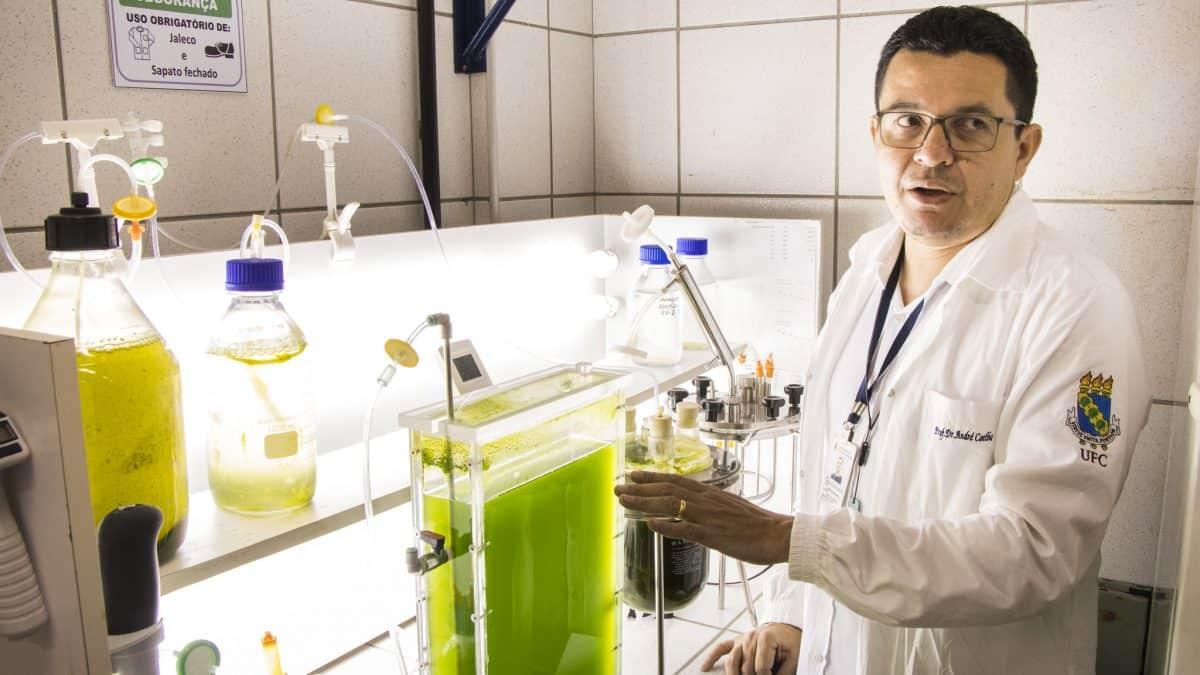 Pesquisadores desenvolvem banco de microalgas