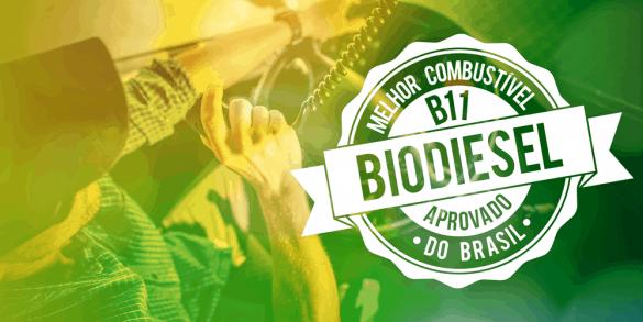 biodiesel B11