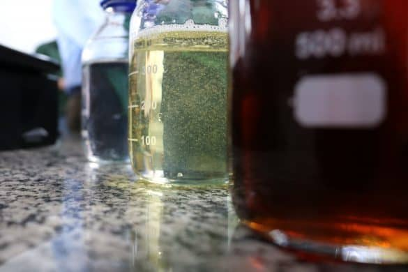 glicerina obtida na produção de biodiesel
