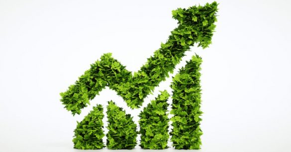 biocombustíveis, renováveis