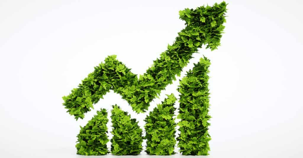 ARTIGO-Biocombustíveis e os princípios de sustentabilidade
