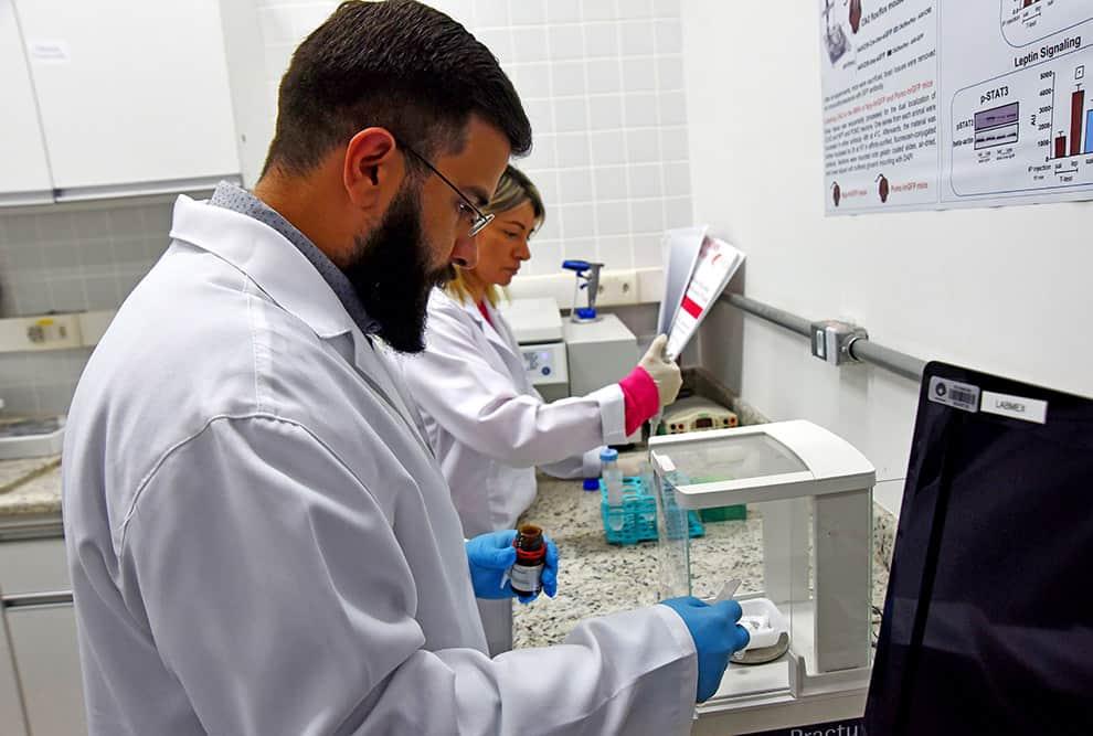 Diesel e obesidade: Estudo da Unicamp investiga os efeitos da exposição crônica a poluente