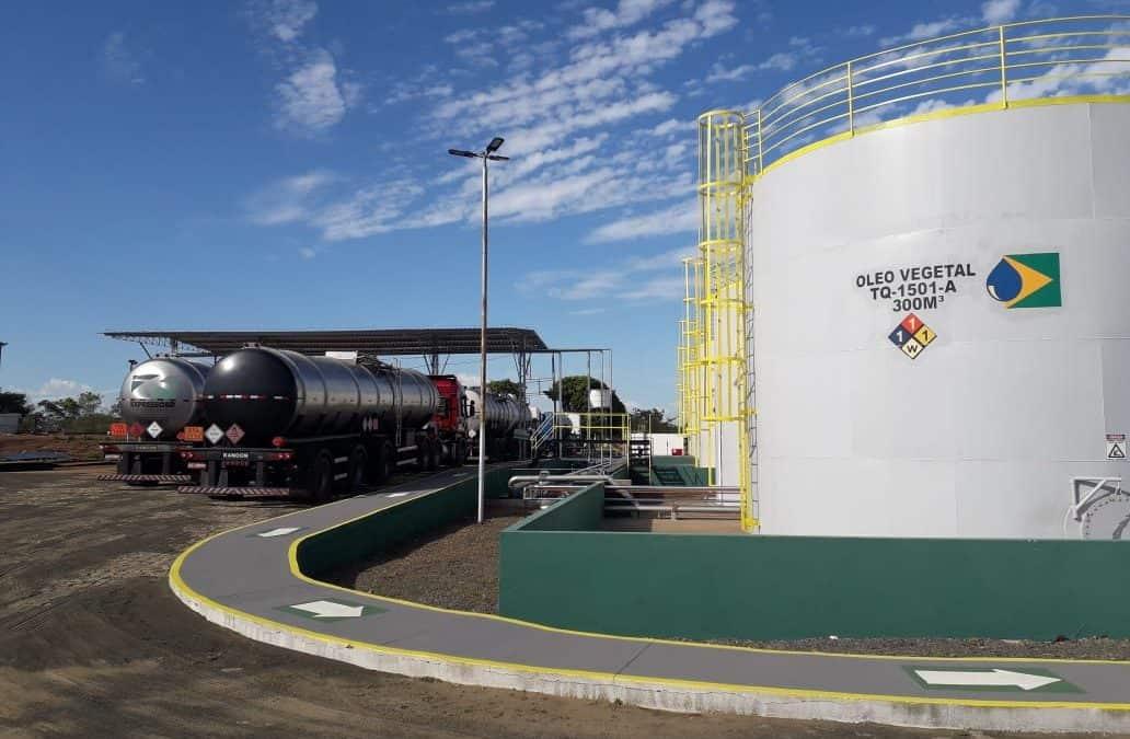 Usina de biodiesel deve gerar 550 empregos no Piauí