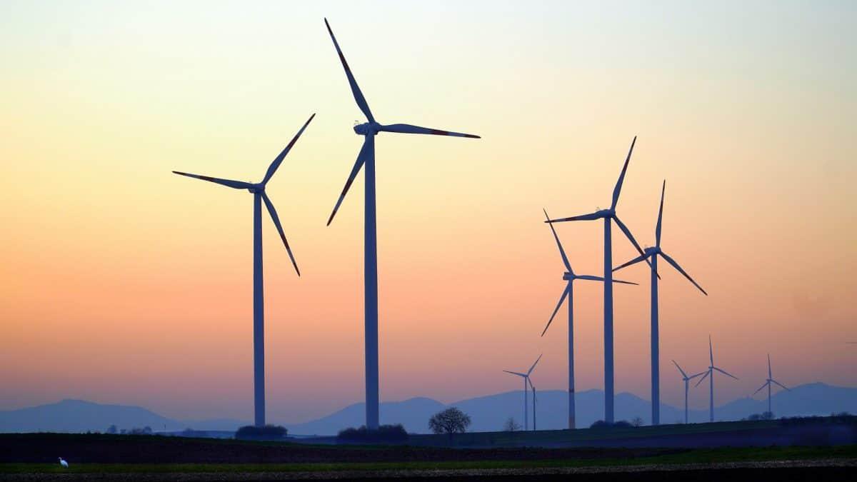 Por que o preço do petróleo não importa para as energias renováveis