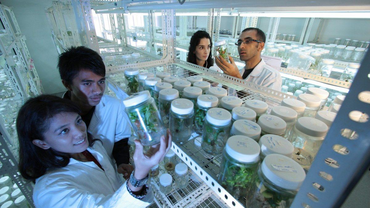 ARTIGO-Próxima parada: revolução biotecnológica