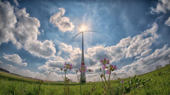 IEA mapeia o impacto da covid-19 no desenvolvimento de projetos de renováveis