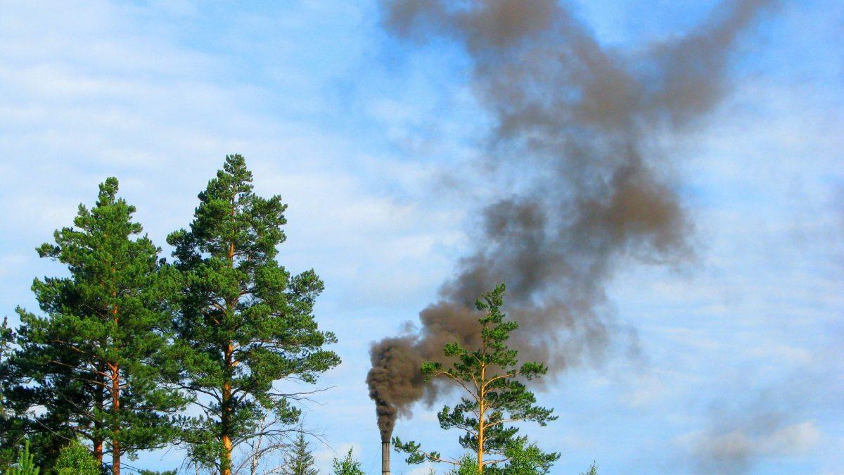 Onda de calor na Sibéria seria 'quase impossível' sem mudanças climáticas