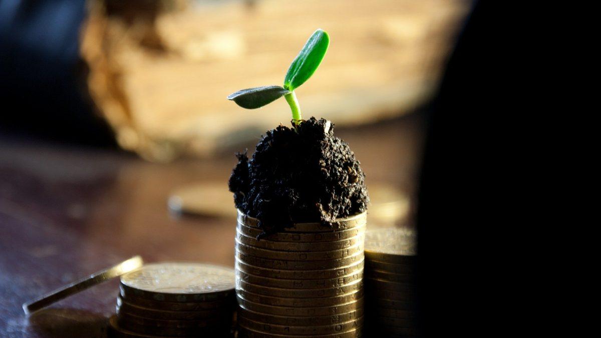 Clipping 1ª edição: O que é economia verde. E por que ela é defendida para o Brasil