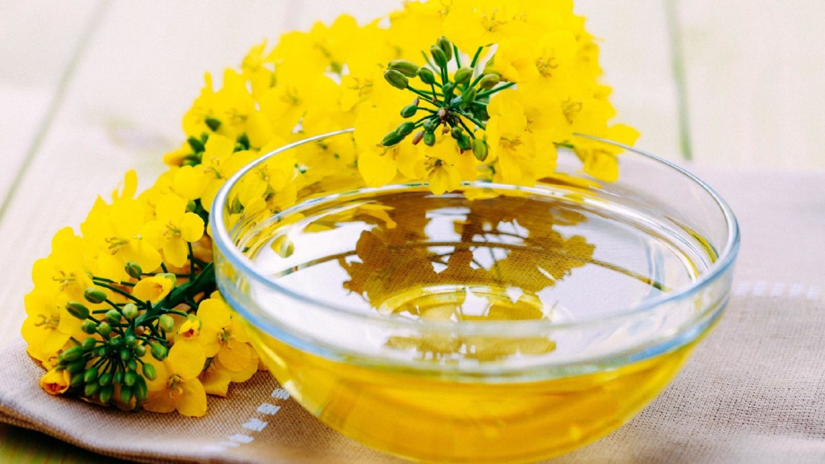 Produção de aminas antioxidantes por modificação de ésteres metílicos de ácidos graxos de canola na presença de aminas primárias