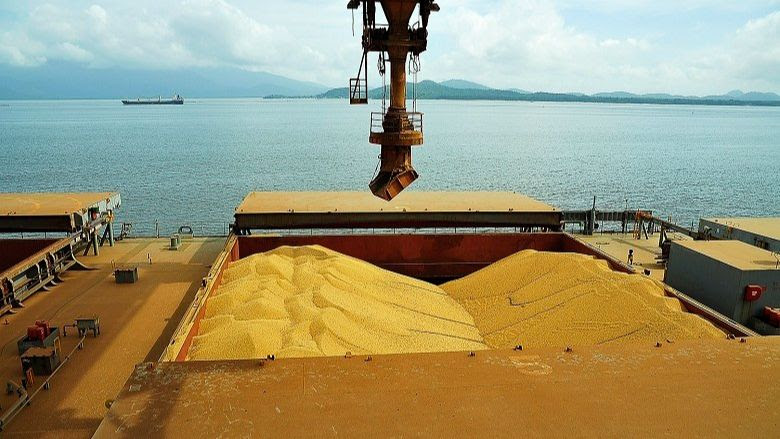 Clipping 2ª edição: Para Conab, Brasil deve quebrar o recorde de exportação de soja em grão em 2020