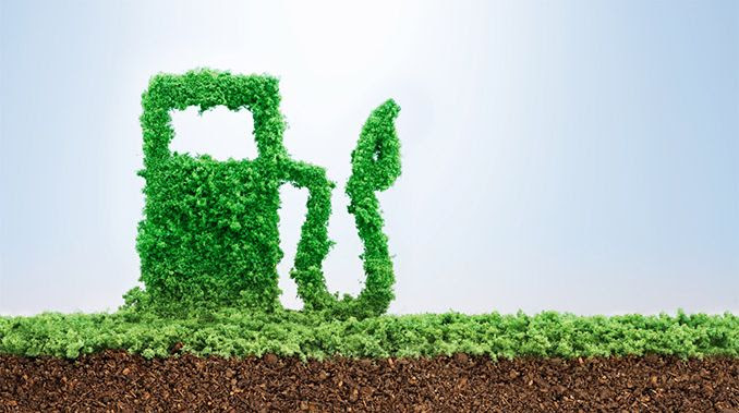 Ponte Inovação: Brasil lidera produção de biocombustíveis
