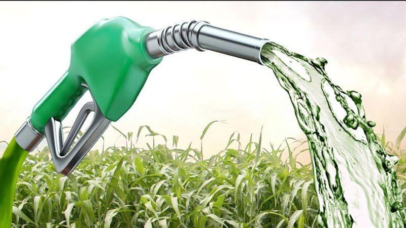 Clipping 2ª edição: Nota oficial MME/Mapa sobre o 79º Leilão de Biodiesel