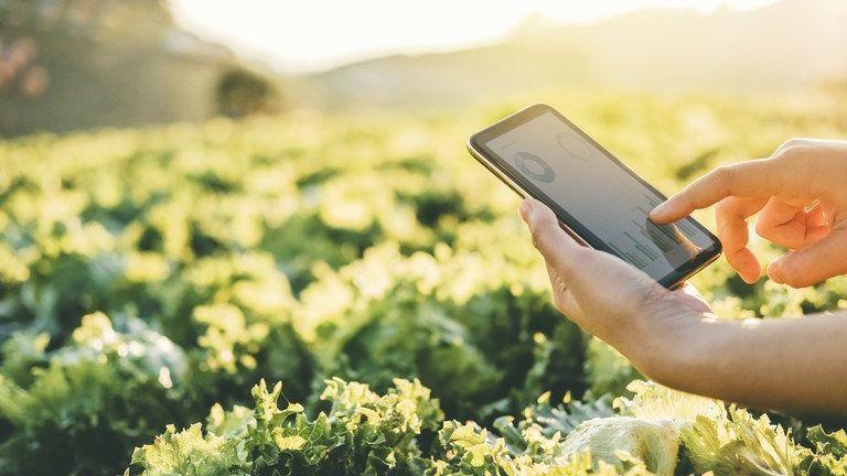 Clipping 1ª edição: Nota conjunta sobre a Missão de Inovação Agrícola para o Clima