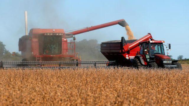 Clipping 1ª edição: Área plantada com soja no Brasil em 2021/22 deve crescer cerca de 4%