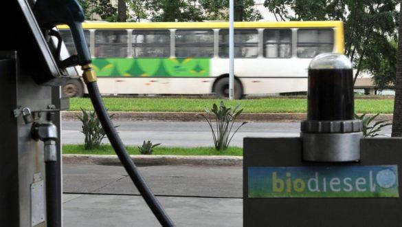 Biodiesel Ônibus Bomba