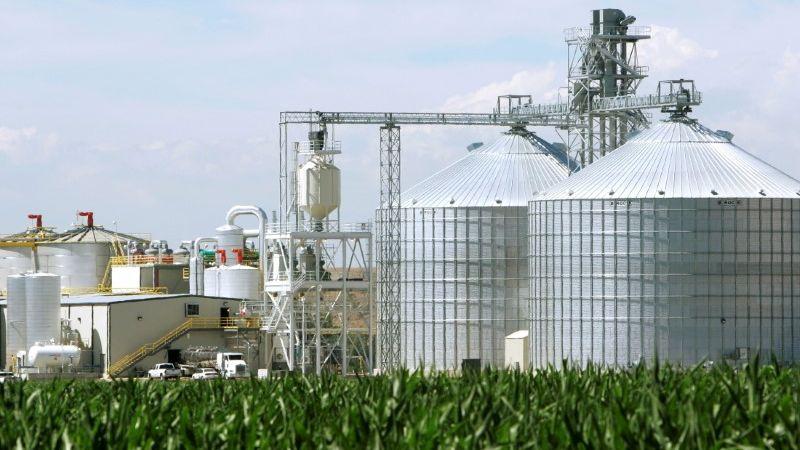 Clipping 2ª edição: Preços de óleos vegetais na China despencam após notícia sobre biocombustível nos EUA