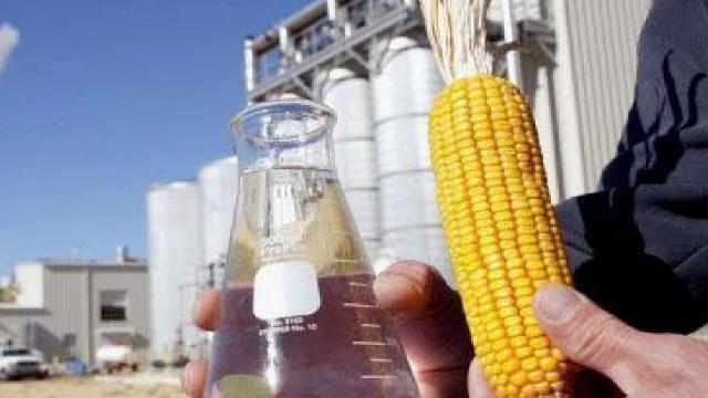 Clipping 1ª edição: Duas novas indústrias para produção de biodiesel serão construídas em Lucas e Alta Floresta