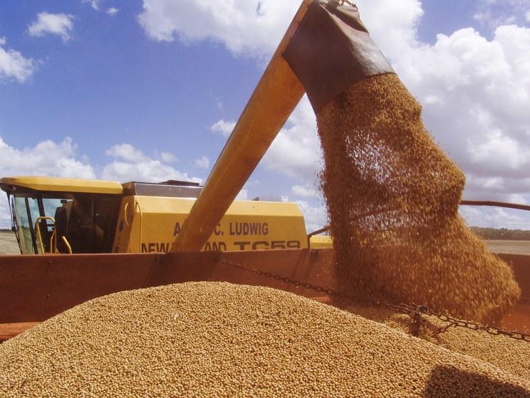 Clipping 1ª edição: Safra de grãos deve chegar a 262,13 milhões de toneladas