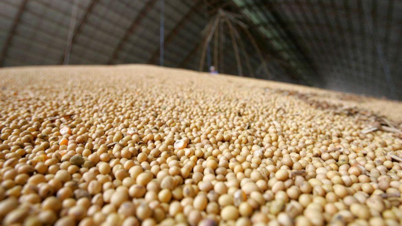 Clipping Ubrabio 1º edição: Soja encerra junho com pouco mais de 11 milhões de toneladas exportadas