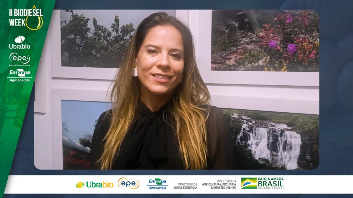 O Brasil pode ser líder mundial na produção de biocombustíveis
