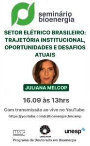 Seminário Bioenergia - Setor elétrico brasileiro: Trajetória institucional, oportunidades e desafios atuais